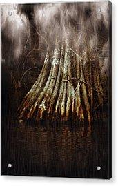 Reelfoot In Gentle Rain Acrylic Print by Julie Dant