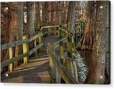 Acrylic Print featuring the photograph Reelfoot Lake 001 by Lance Vaughn