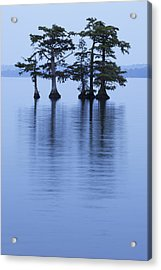 Reelfoot Reflections Acrylic Print by Eric Foltz