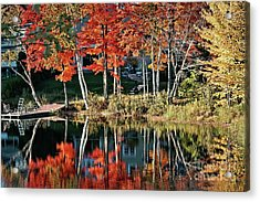 Acrylic Print featuring the photograph Reflected Beauty by Aimelle