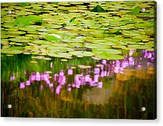 Reflected Flowers And Lilies Acrylic Print by Paul Kloschinsky