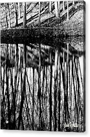 Reflected Landscape Patterns Acrylic Print by Carol F Austin