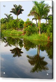 Acrylic Print featuring the photograph Reflected Palms by Rosalie Scanlon