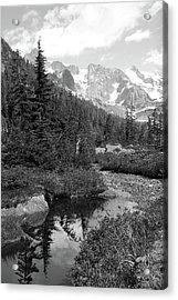 Reflected Pine Acrylic Print