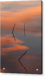Reflected Sunrise Acrylic Print