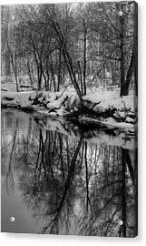 Reflected Trees Acrylic Print