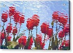 Reflected Tulips Acrylic Print