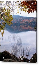 Reflecting Autumn Acrylic Print by Terry Davis