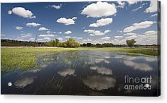 Reflecting Clouds - Jim River Valley Acrylic Print by Patrick Ziegler