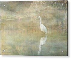 Reflecting Egret Acrylic Print by Sarah Vernon
