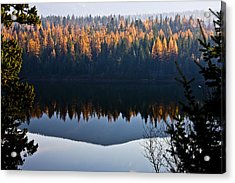 Reflecting On Autumn Acrylic Print