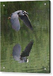 Reflecting On Flight Acrylic Print