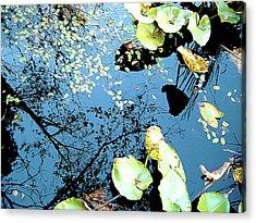 Reflecting Pond Acrylic Print