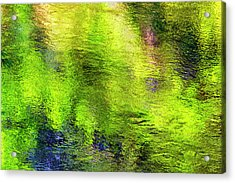 Acrylic Print featuring the photograph Reflecting Waters by Dee Browning