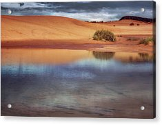 Reflection - 1 - Coral Pink Sand Dunes - Utah Acrylic Print by Nikolyn McDonald