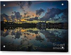 Reflection 7 Acrylic Print by Mina Isaac
