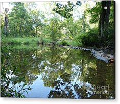 Acrylic Print featuring the photograph Reflection Along Beetree Run by Donald C Morgan