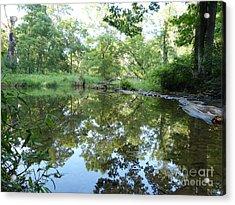 Reflection Along Beetree Run Acrylic Print