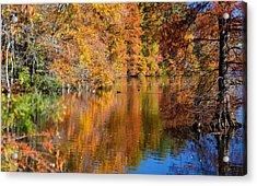 Reflected Fall Foliage Acrylic Print by Allan Levin