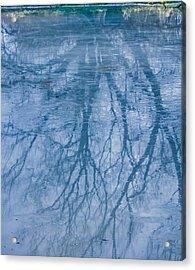 Reflection January 2016 Acrylic Print by Leif Sohlman