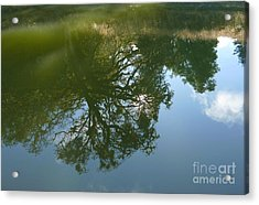 Reflection Acrylic Print by JoAnn SkyWatcher