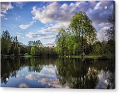Reflection Acrylic Print by Martin Newman