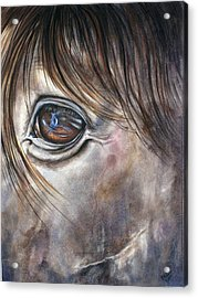 Reflection Of A Painted Pony Acrylic Print