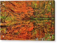 Reflection Of Autumn Acrylic Print by Midori Chan