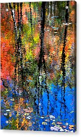 Reflection Of Blue Sky And Autumn Maples Acrylic Print by Christina Rollo