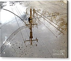 Puddle Reflections  Acrylic Print