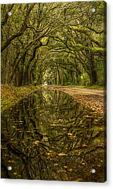Reflection Of Live Oaks  Acrylic Print by Serge Skiba