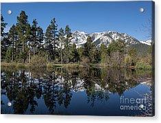 Reflection Of Mount Tallac Acrylic Print by Webb Canepa