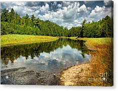 Reflection Of Nature Acrylic Print