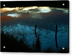 Reflection Of The Sky In A Pond Acrylic Print by Mario Brenes Simon