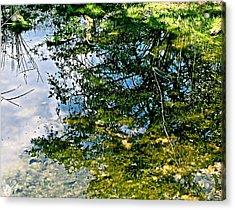 Reflection Pool Acrylic Print by Debra     Vatalaro