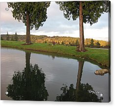 Reflections #183 Acrylic Print by Barbara Tristan