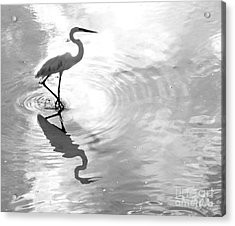 Reflections And Ripples Acrylic Print