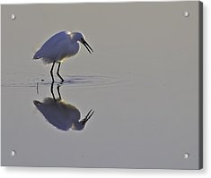 Reflections Acrylic Print by Brian Wright