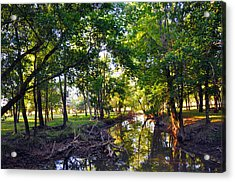 Reflections Acrylic Print by Brittany H