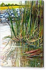 Reflections Acrylic Print by Elaine Hodges