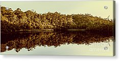 Reflections From Cockle Creek  Acrylic Print