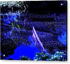 Acrylic Print featuring the photograph Reflections by HweeYen Ong