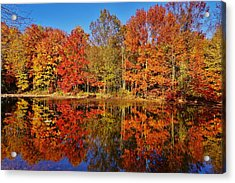 Reflections In Autumn Acrylic Print