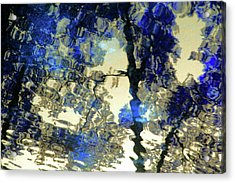 Reflections In Blue Acrylic Print by Carolyn Stagger Cokley
