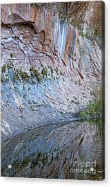 Acrylic Print featuring the photograph Reflections In Oak Creek Canyon by Sandra Bronstein