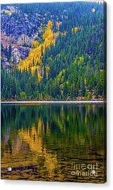 Reflections Acrylic Print by Jon Burch Photography