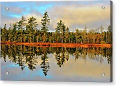Acrylic Print featuring the photograph Reflections by Kathleen Sartoris