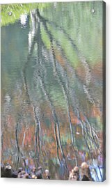 Reflections Acrylic Print by Linda Geiger