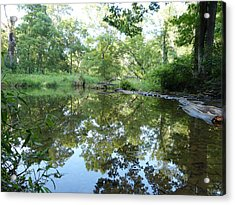 Acrylic Print featuring the photograph Reflections Of Beetree Run by Donald C Morgan
