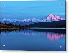 Sunset Reflections Of Denali In Wonder Lake Acrylic Print